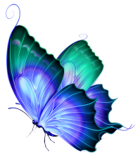 blue and green butterfly transparent